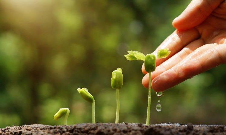 Melestarikan Lingkungan dan cara ampuh menjaganya